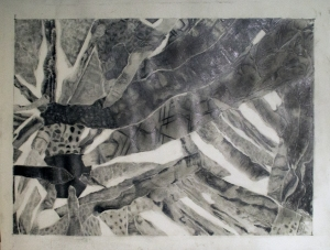 close-up of torn paper project. graphite on  drawing paper.